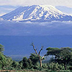 Mount Kilimanjaro, Kenya, Climbing, The Northwest Passage, Guides, Camping, Hiking, summit